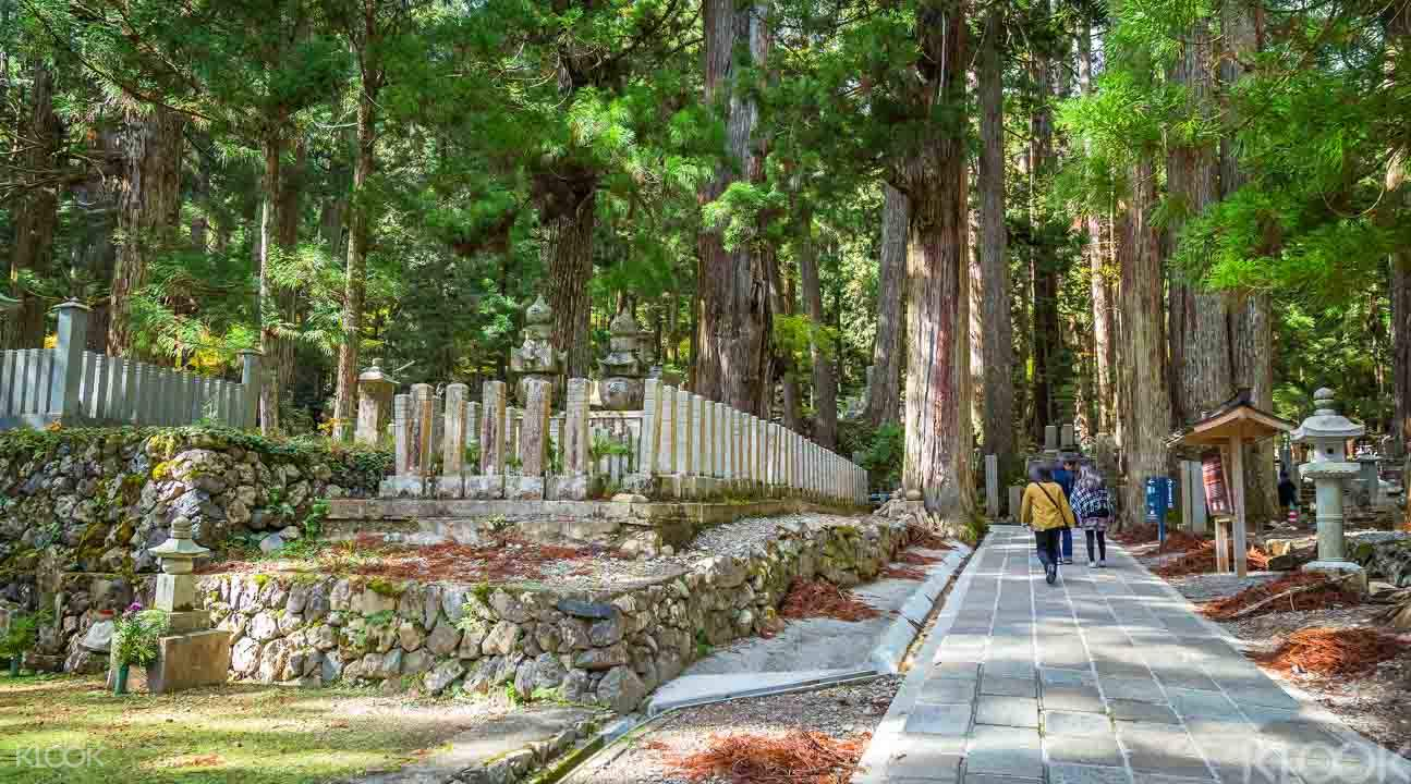 Mt. Koya Day Trek