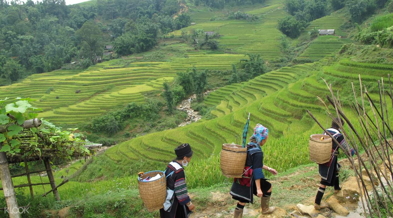 2 Day Sapa Trekking Tour