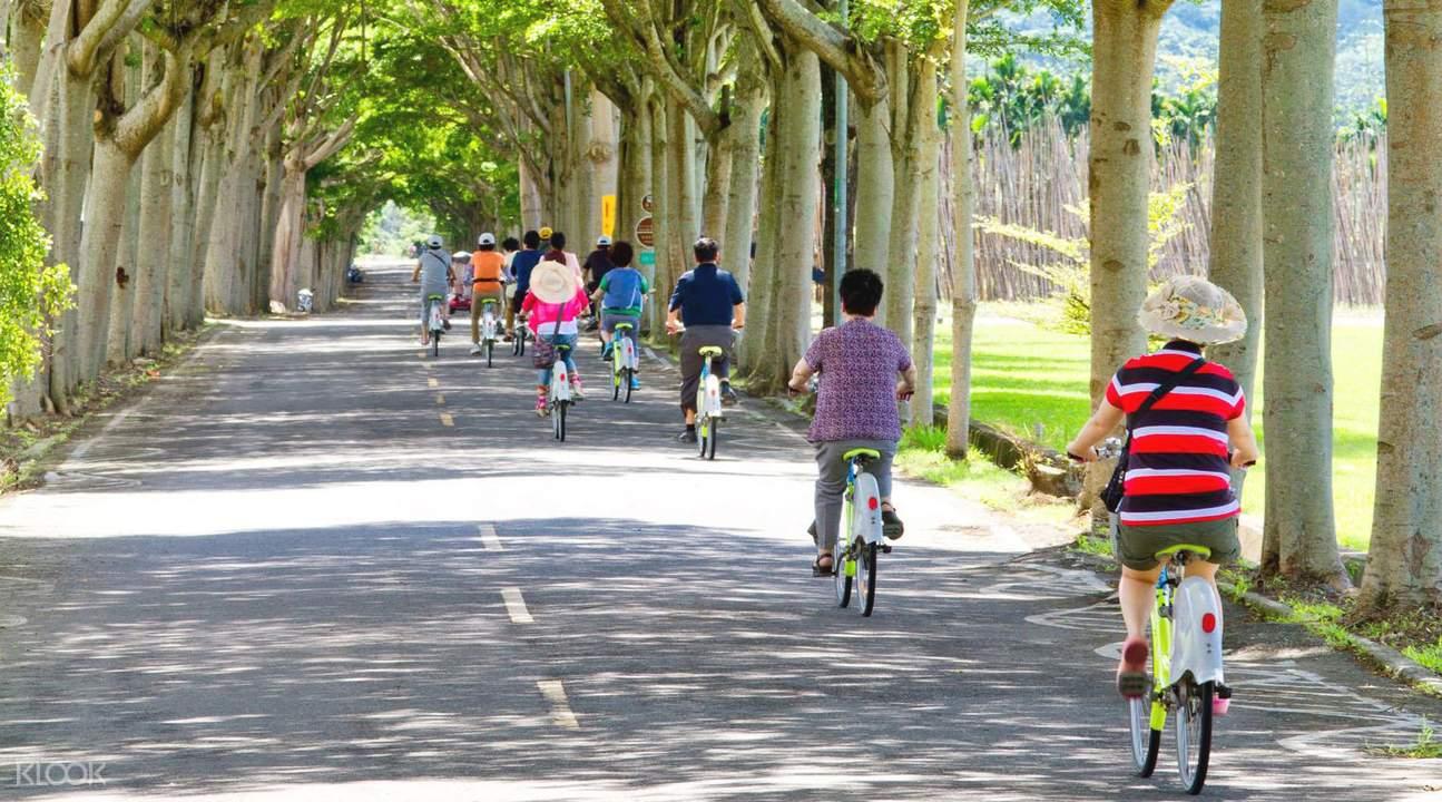 騎車 探訪龍田村