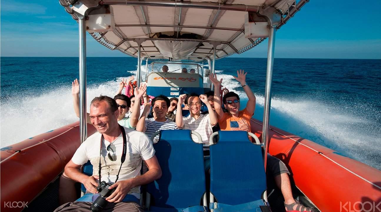 追蹤海豚帆船遊