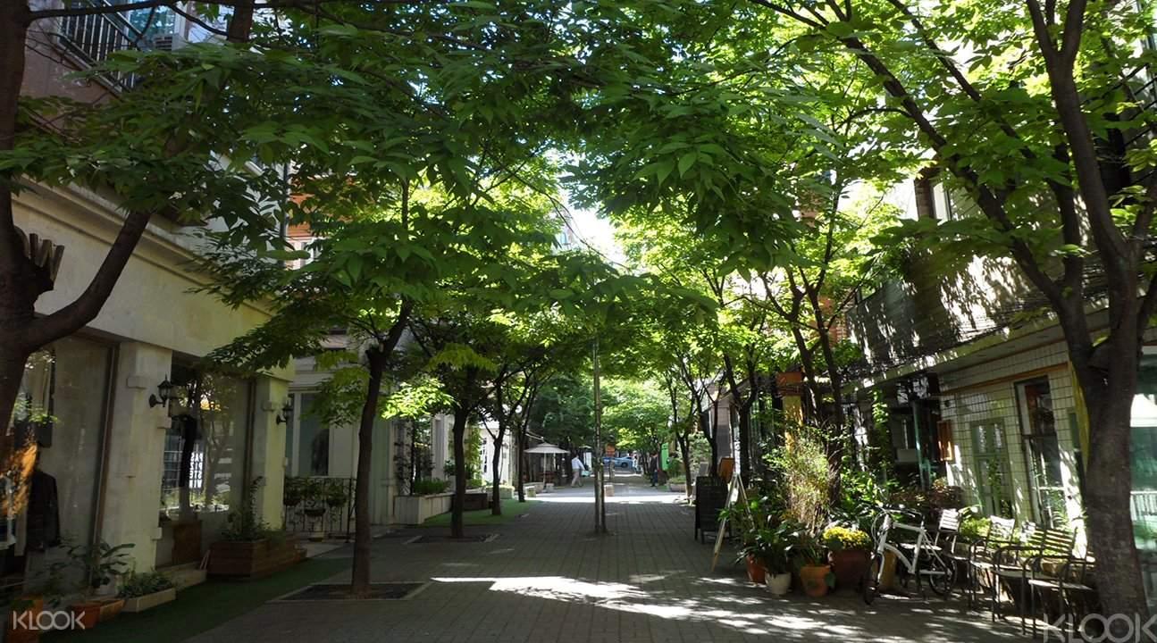 衿川十里櫻花路