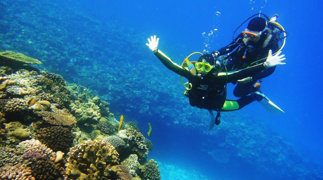 青洞潜水体验