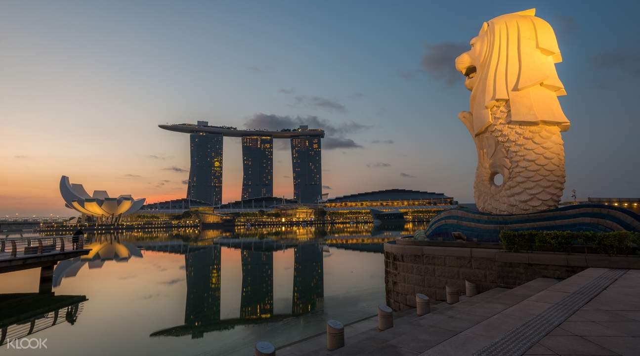 singapore night bus tour