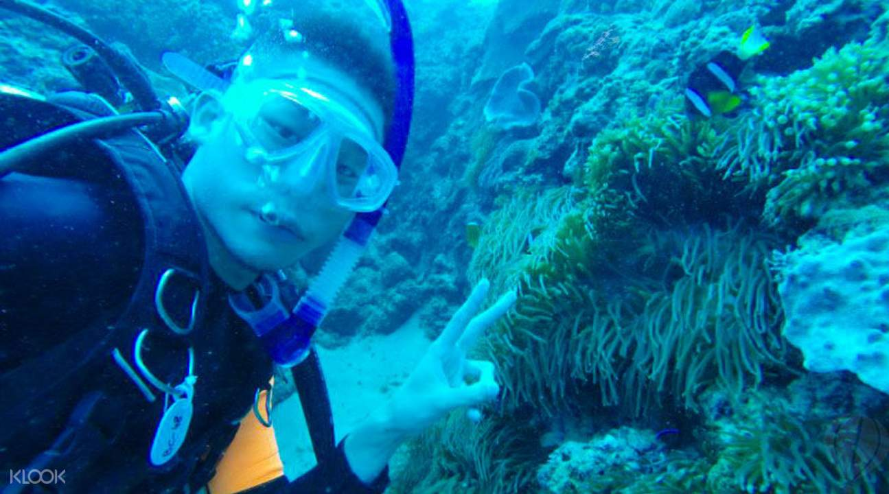 experienced scuba divers kenting