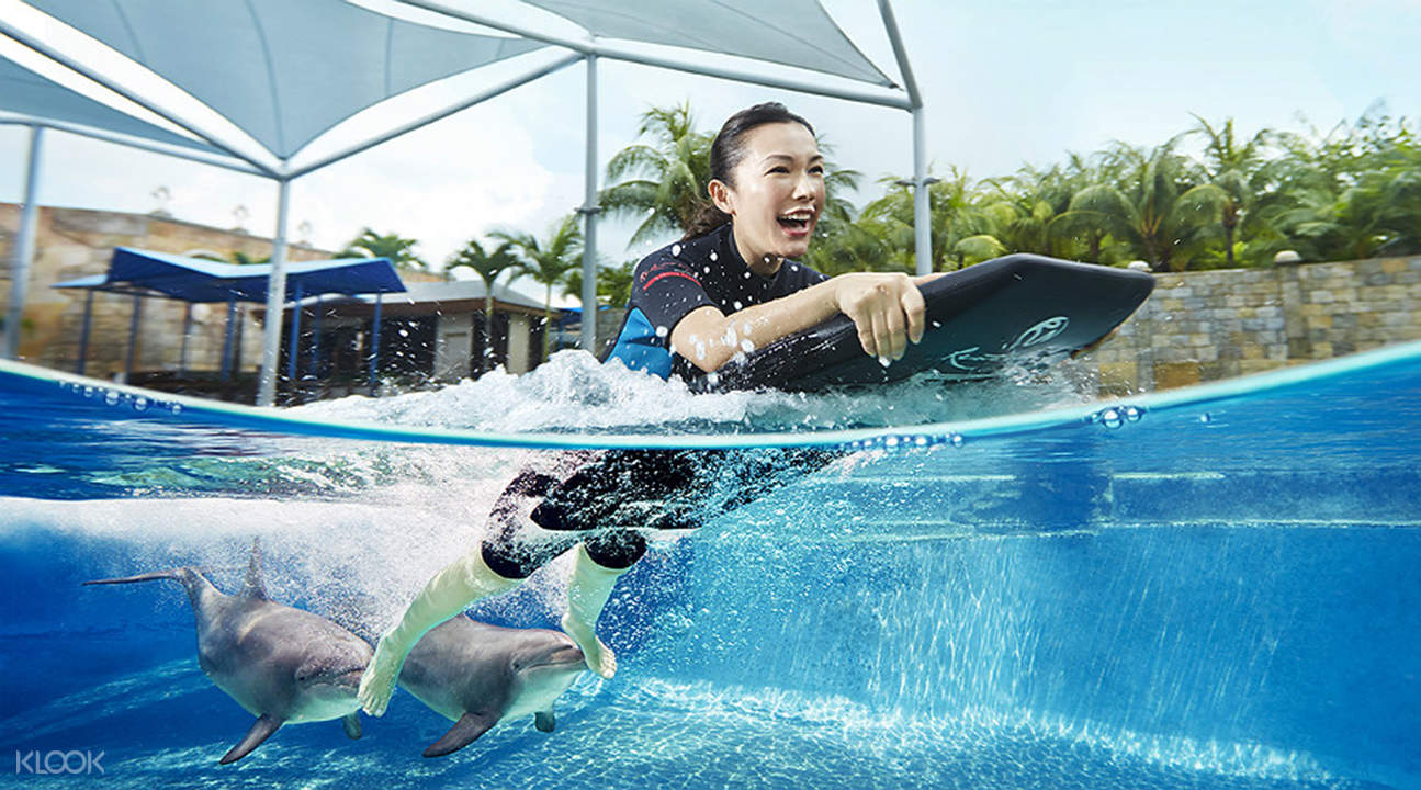 Dolphin Island Sentosa