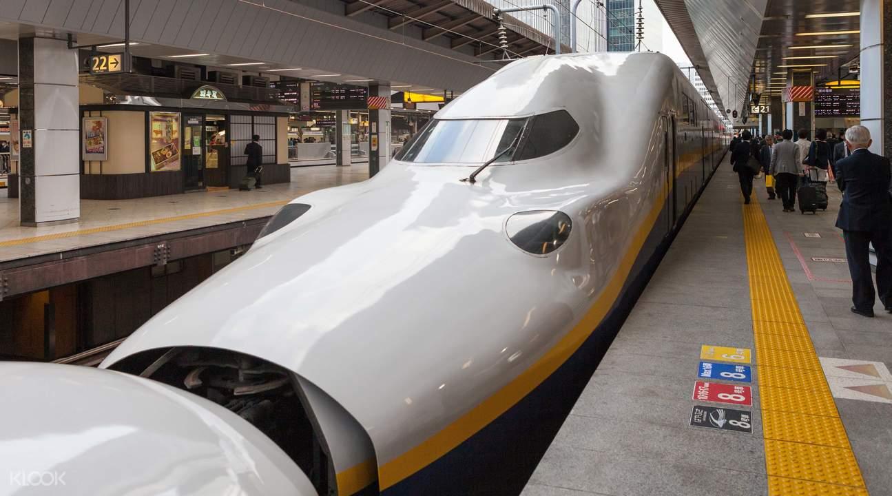 E4系列,上越新幹線「Max 朱鷺(Toki)」號