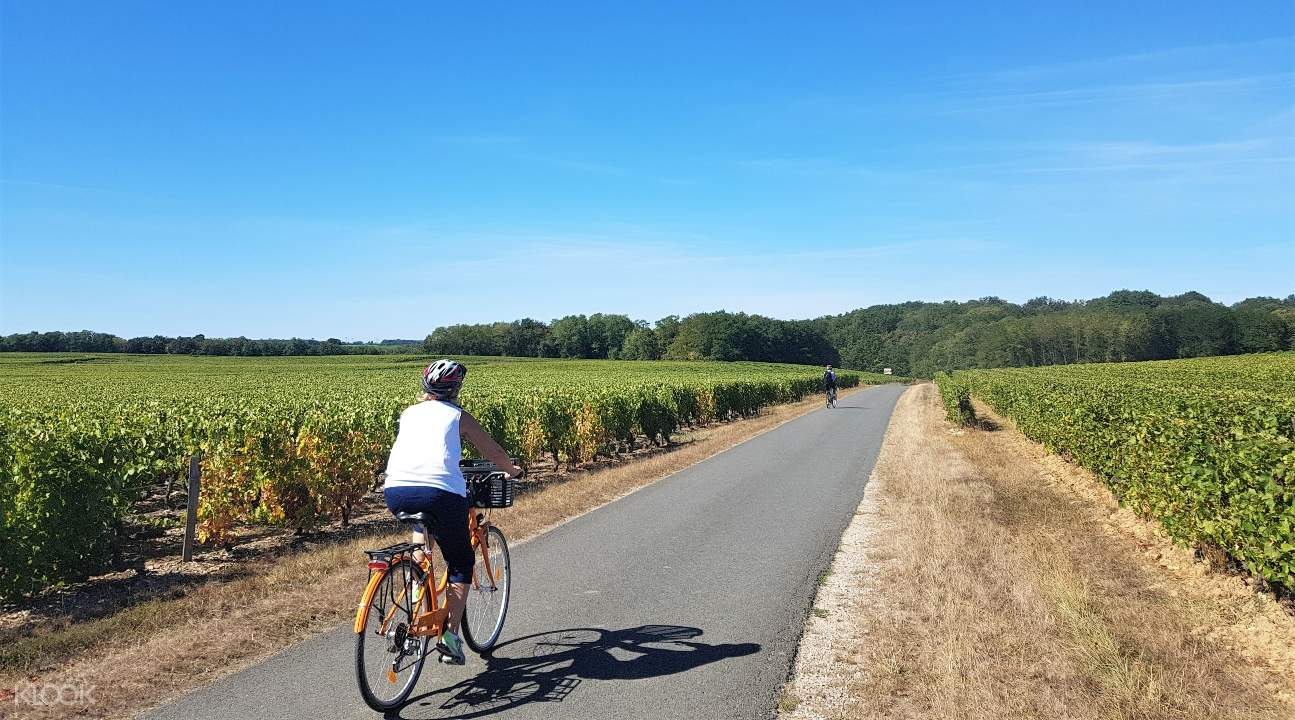a view of someone riding along a road in the Loire Valley