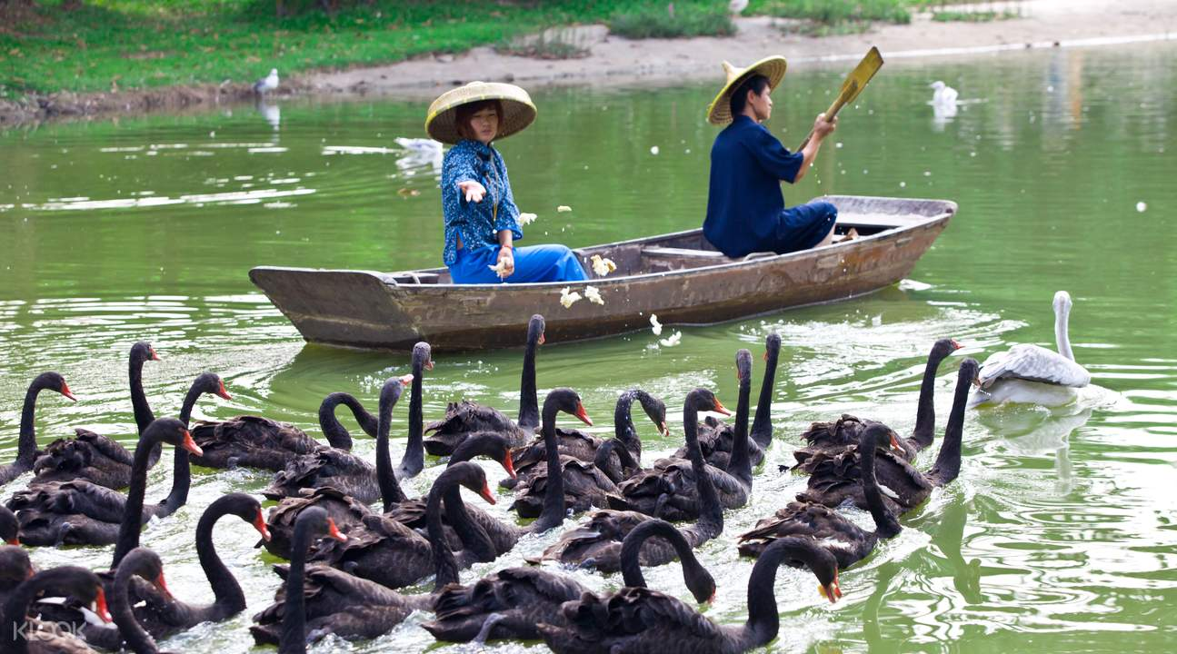 women on the boat chimelong bird park