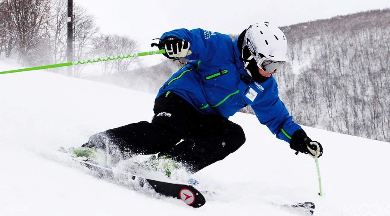 GoSnow Ski