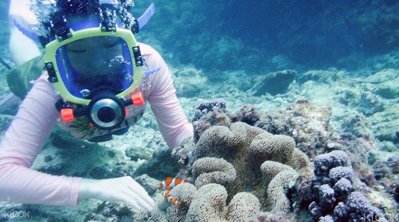 卡雅法海岸慢潛和浮潛3