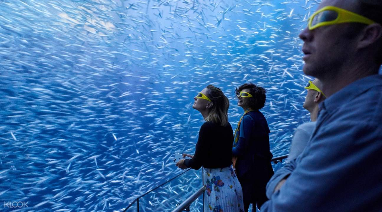 admission to ocean odyssey new york