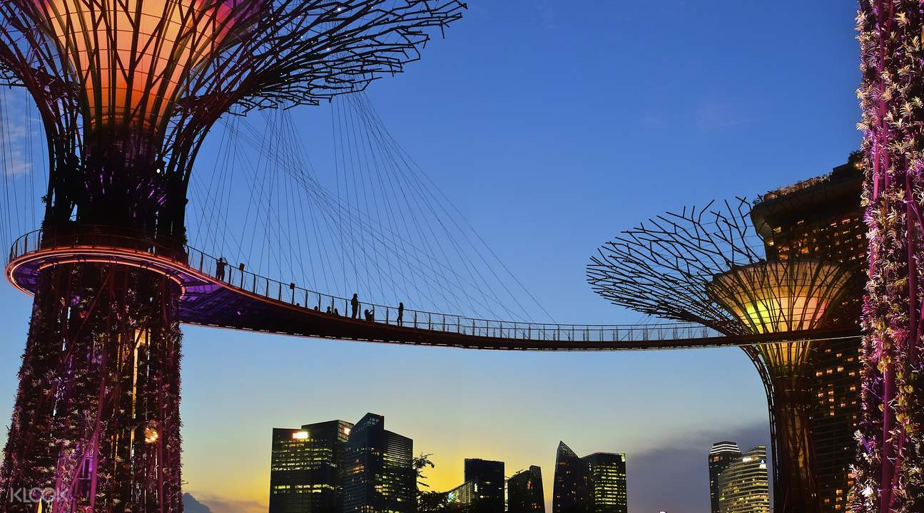 walk along the ocbc skyway additional charge for fantastic views of the garden and marina bay singapore cloud forest