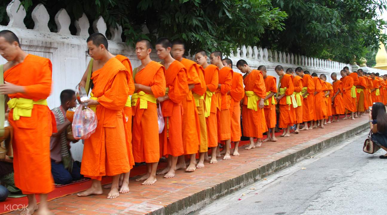 alms giving experience in luang prabang