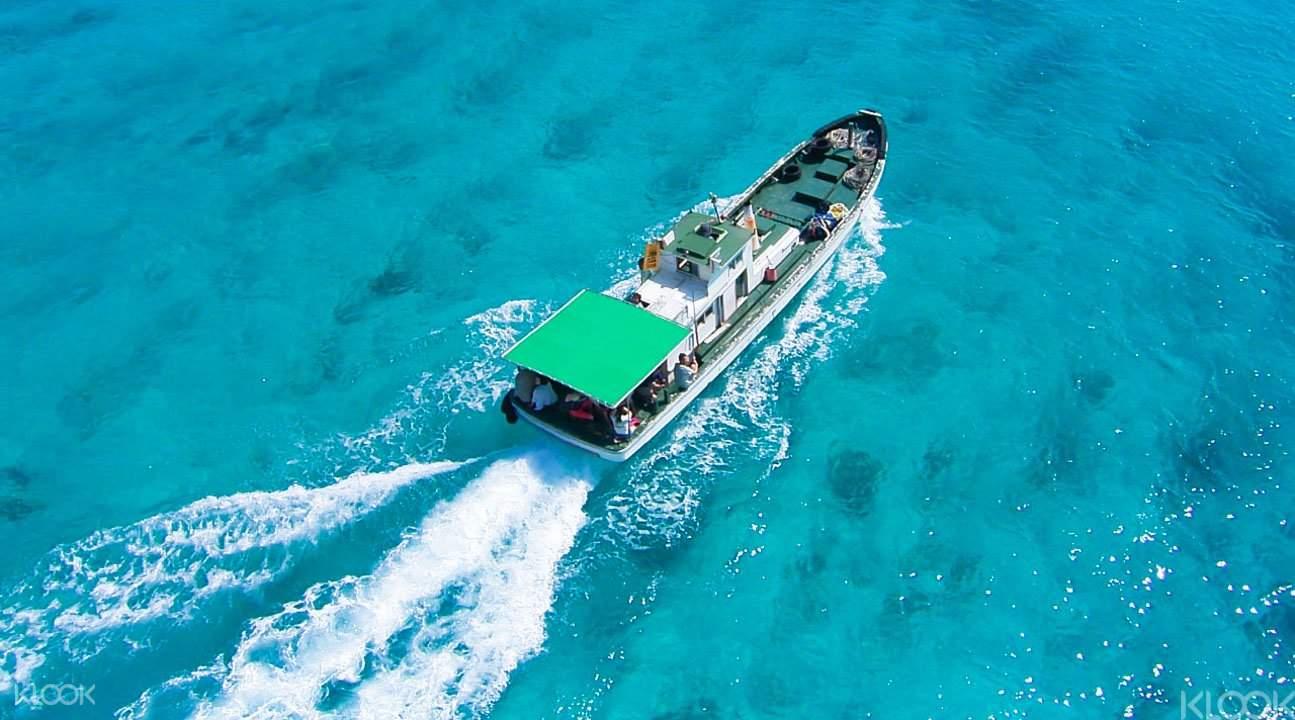 冲绳青洞潜水5