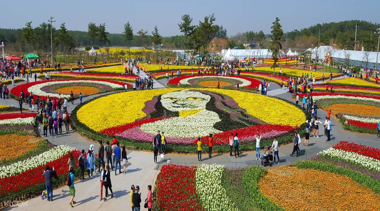 Flower Festivals Trip