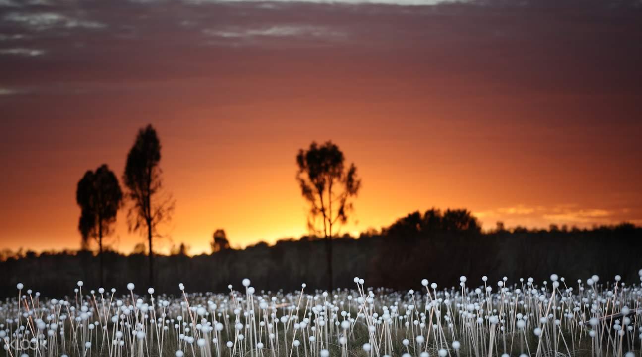 澳洲紅石頭日出