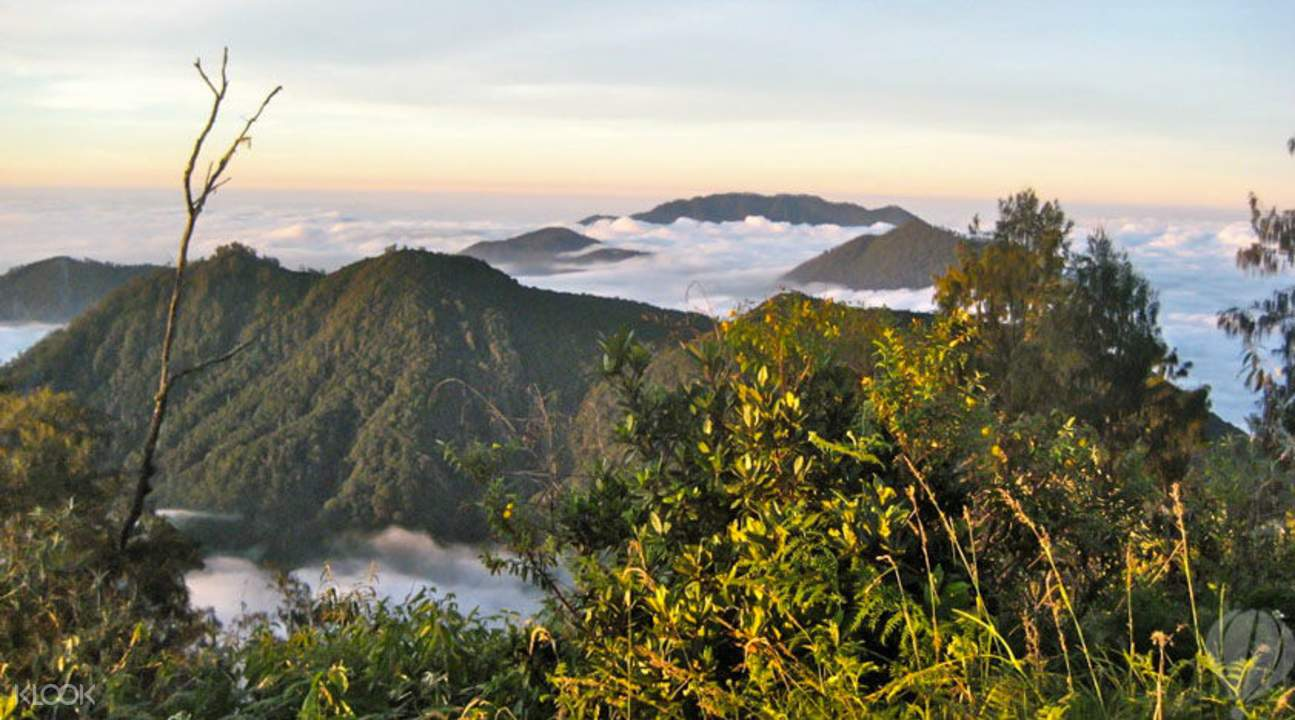 Mount Batukaru