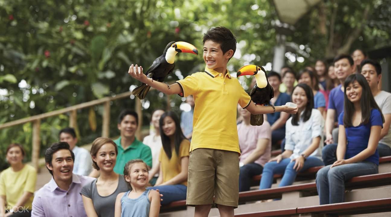 singapore bird park