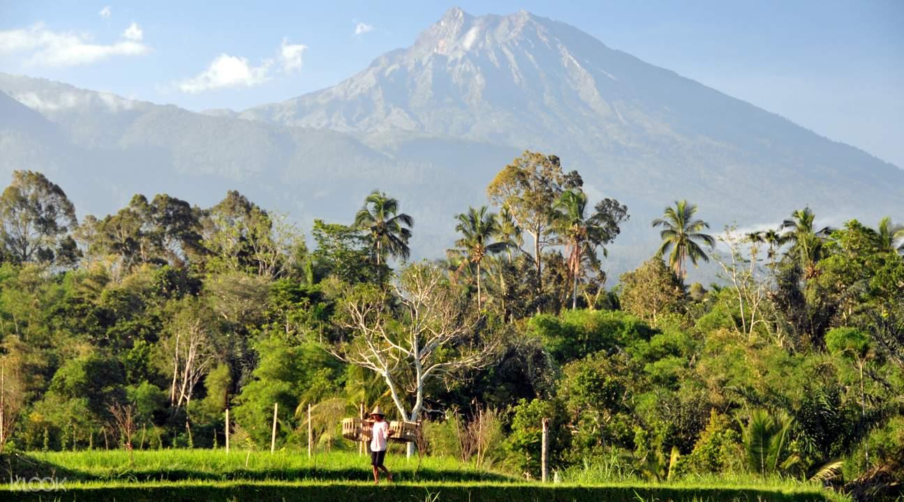 林賈尼火山