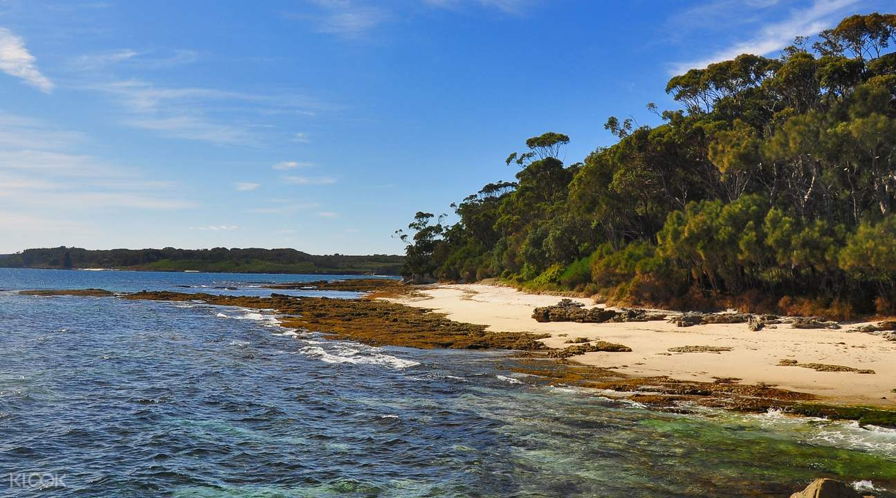 tour jervis bay cruise