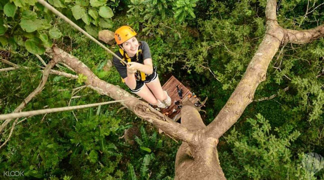 tourist hanging from a tree in flying hanuman in phuket