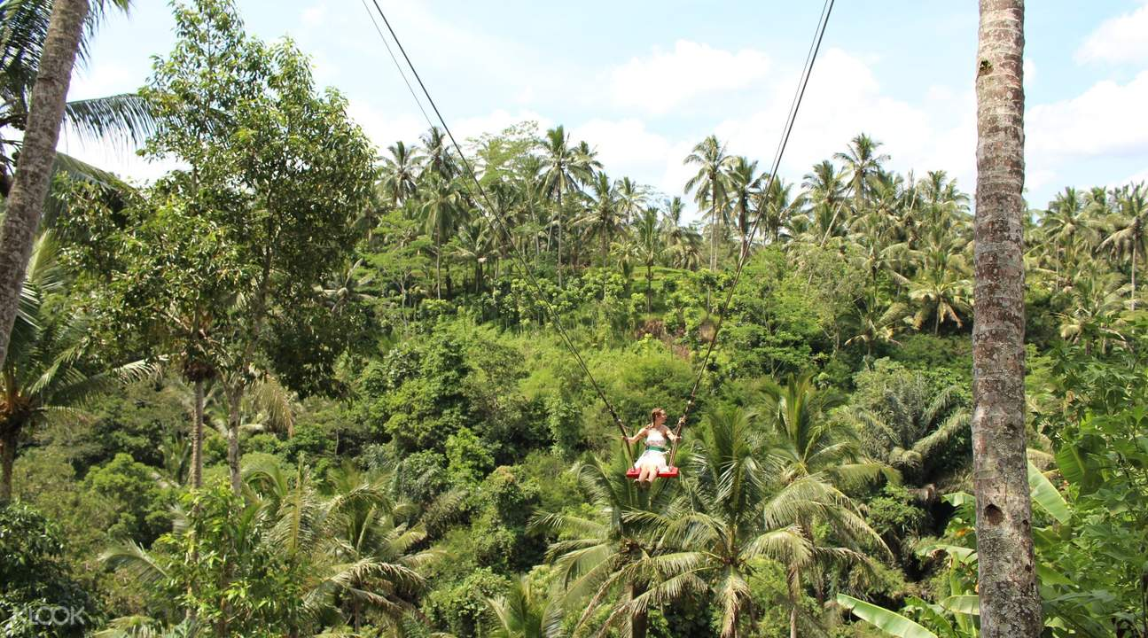 bali swing Tegelalang Rice Field and Monkey Forest Full Day Tour in Ubud