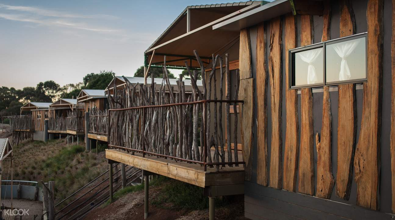 slumber safari experience at werribee open range zoo
