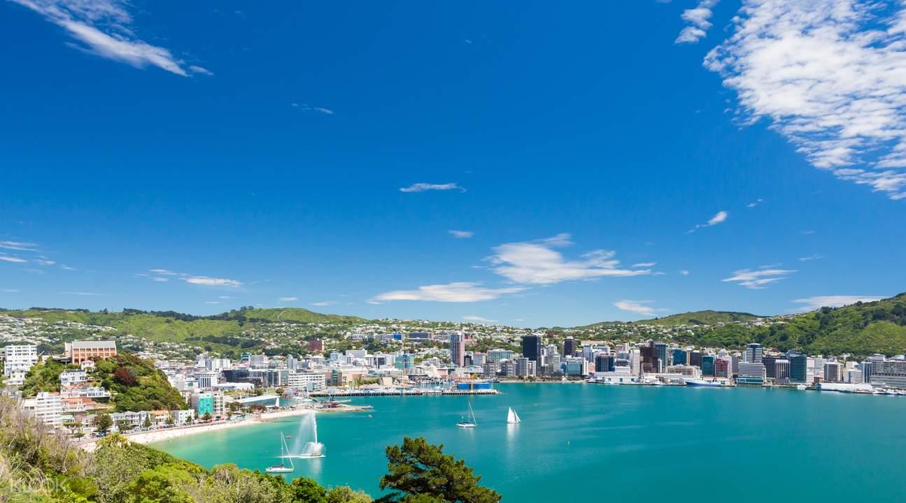 view of the Wellington coastline