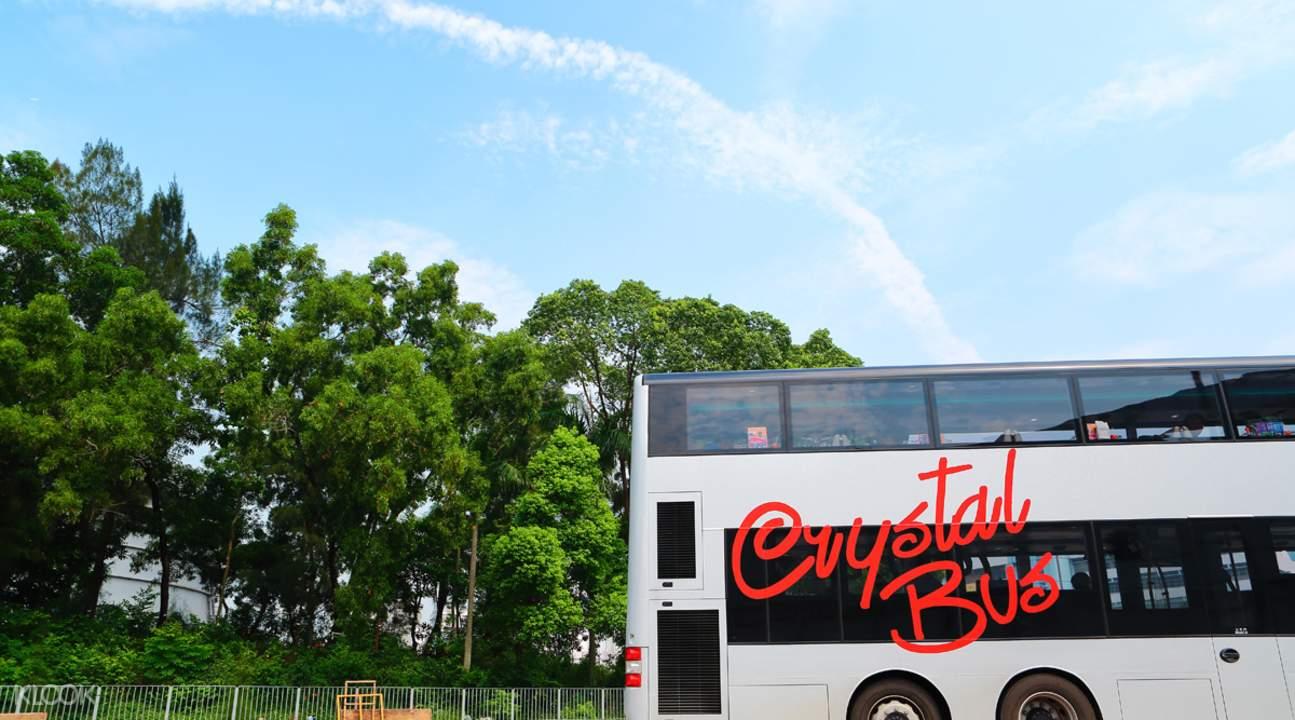 hk dim sum bus tour