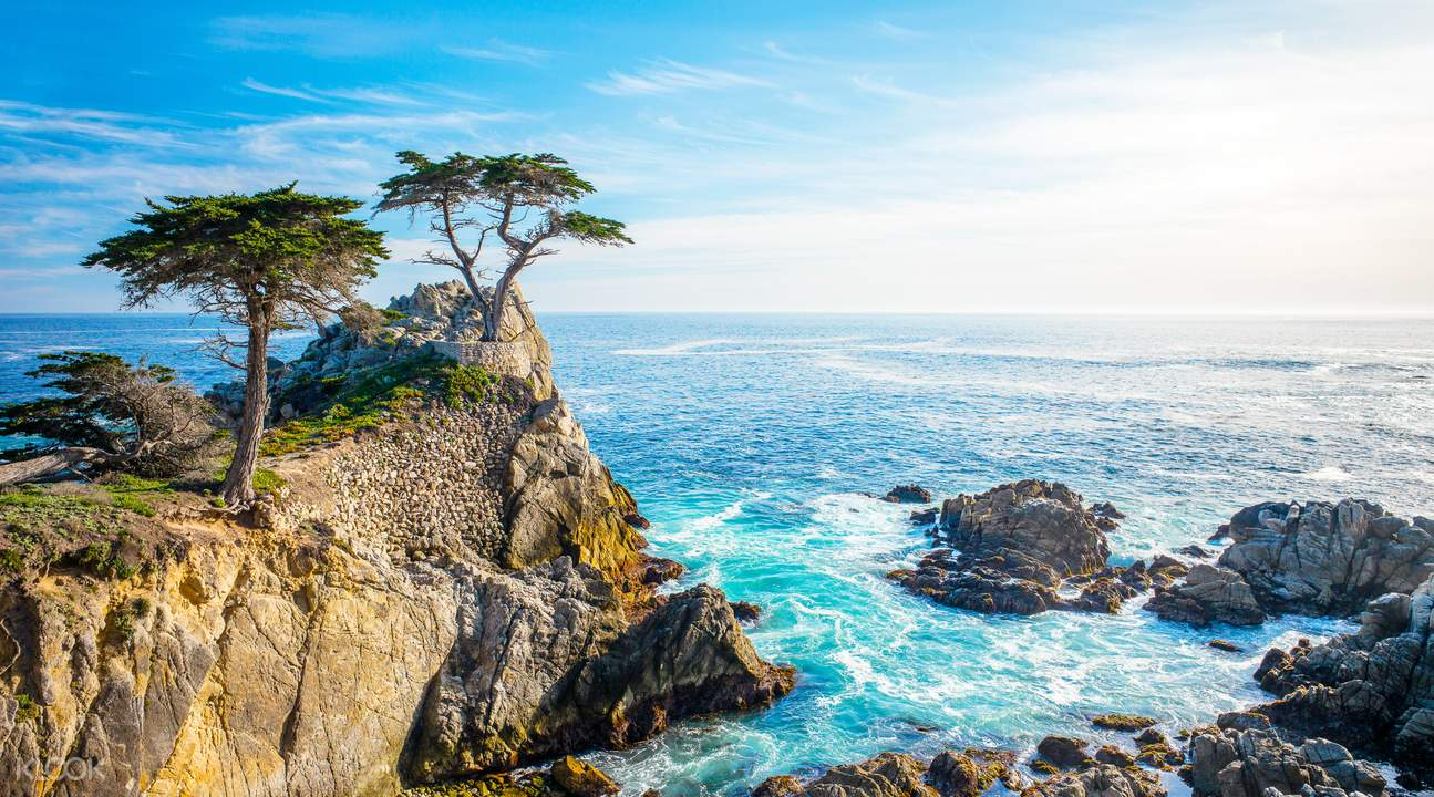 17 mile drive day tour from san francisco