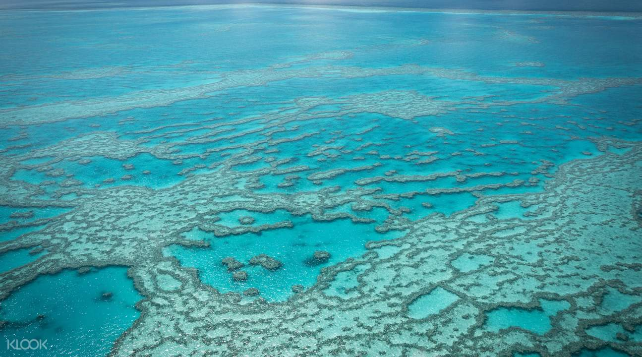 Vertical view of Great Barrier Reef
