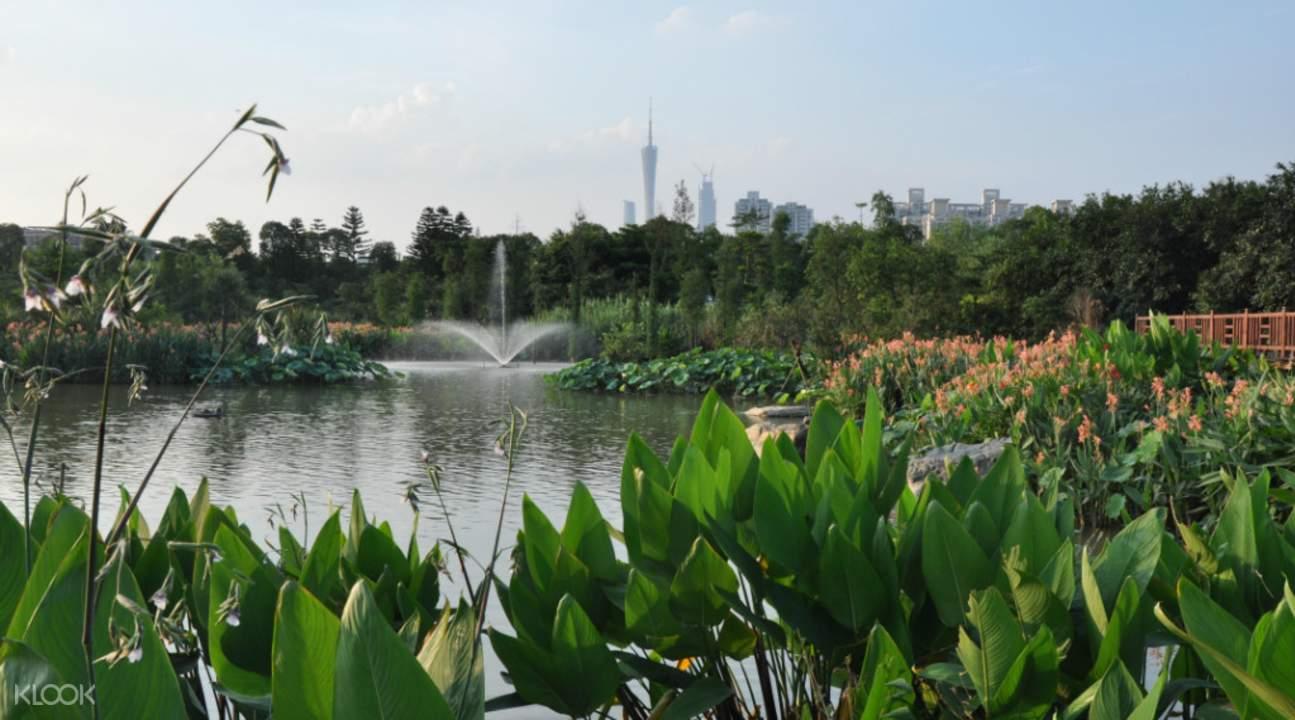 national wetland park china