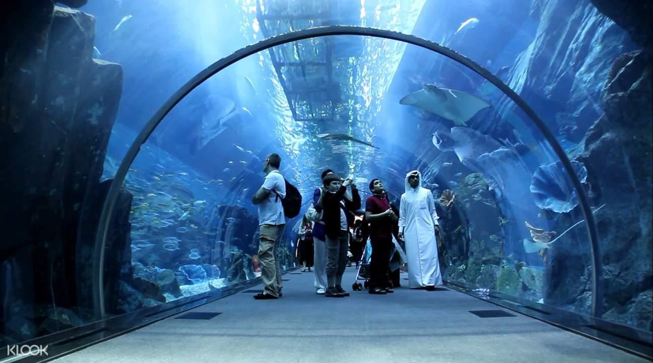 迪拜水族馆通道