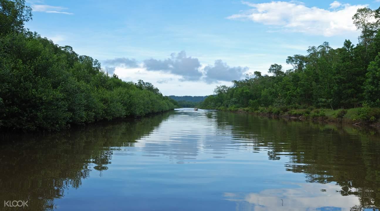 美人魚島浮潛+卡哇卡哇紅樹林船游