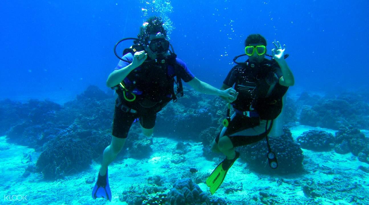 珊瑚島一日遊  潛水