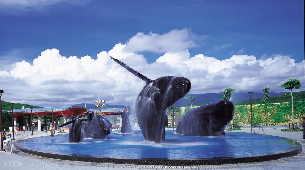 屏东海生馆鲸鱼广场(屏东旅行社拍摄)