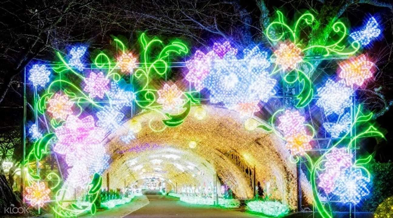 mount fuji illuminations
