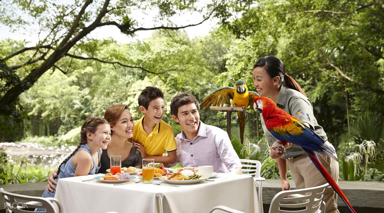 Lunch with parrots in Jurong Bird Park