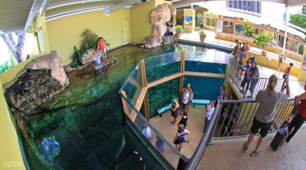 淡水水族馆
