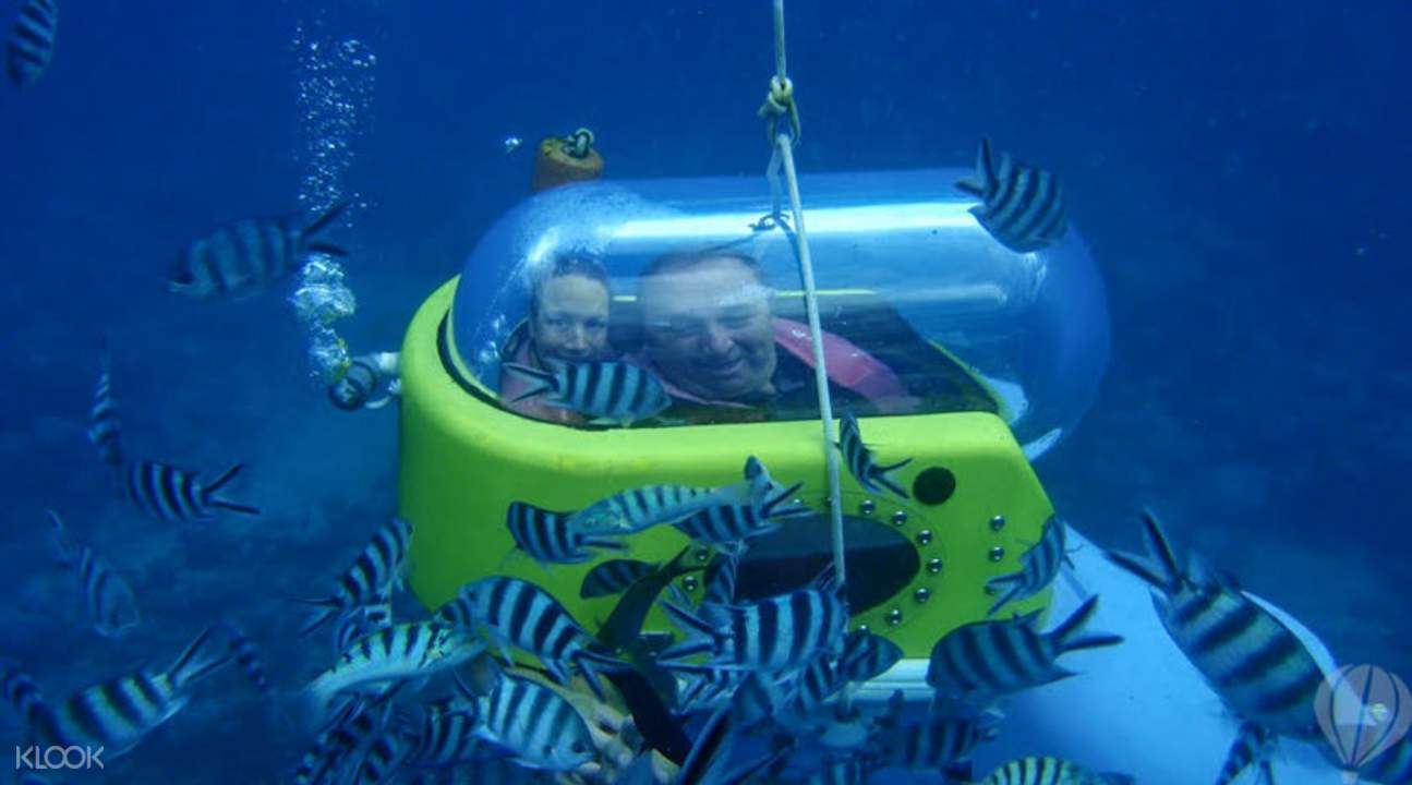 Enjoy this unique underwater activity