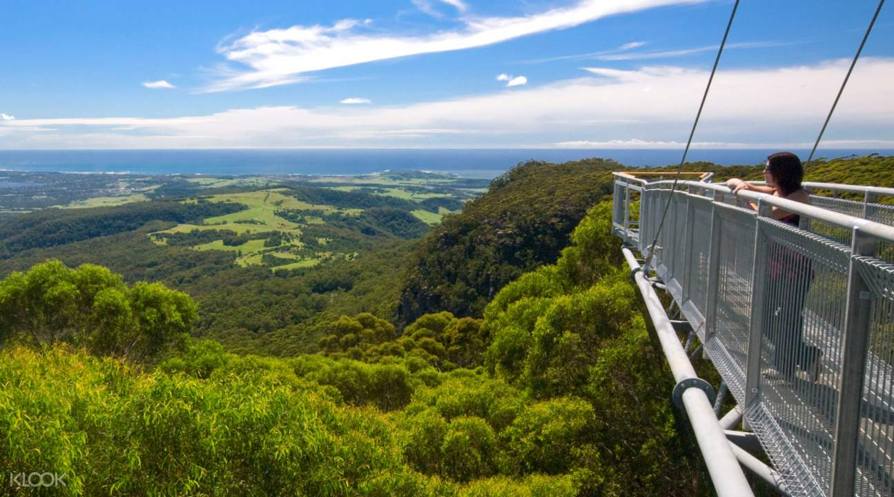 how to get to tree top walk kings park