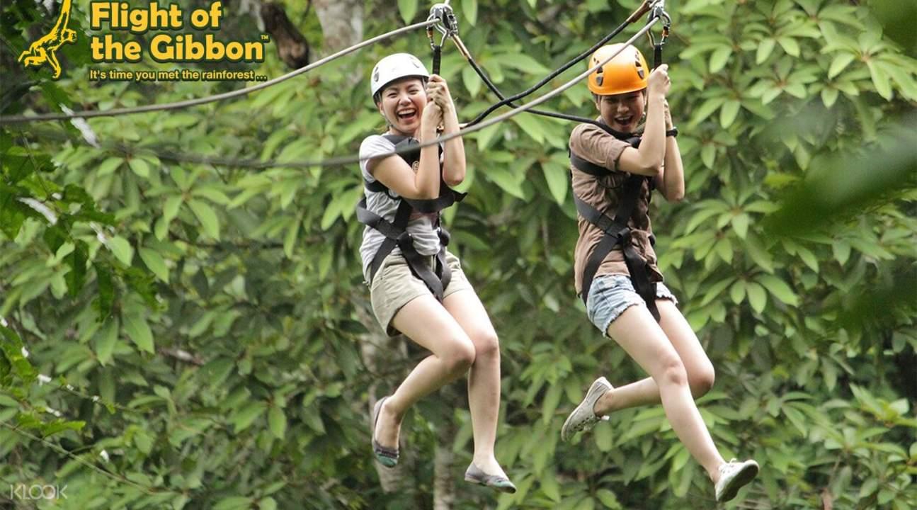 長臂猿飛躍叢林