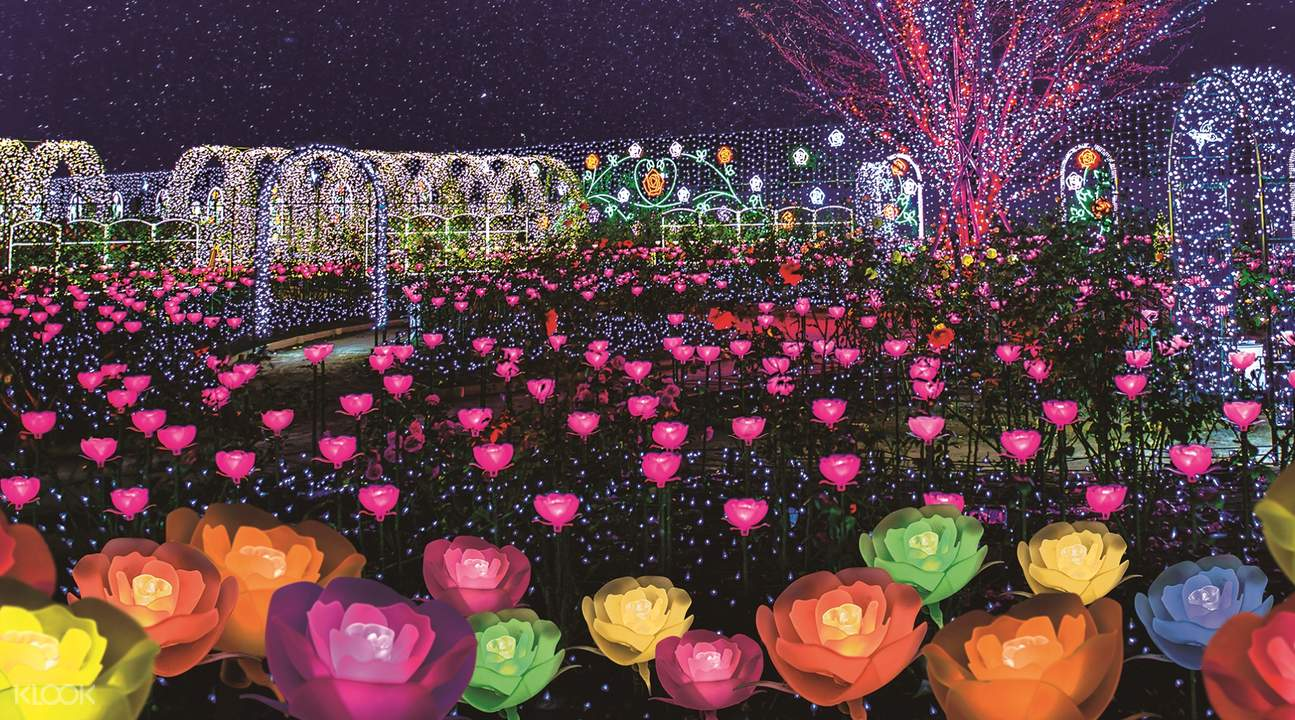 Lake Sagami/Ashikaga Flower Park light show