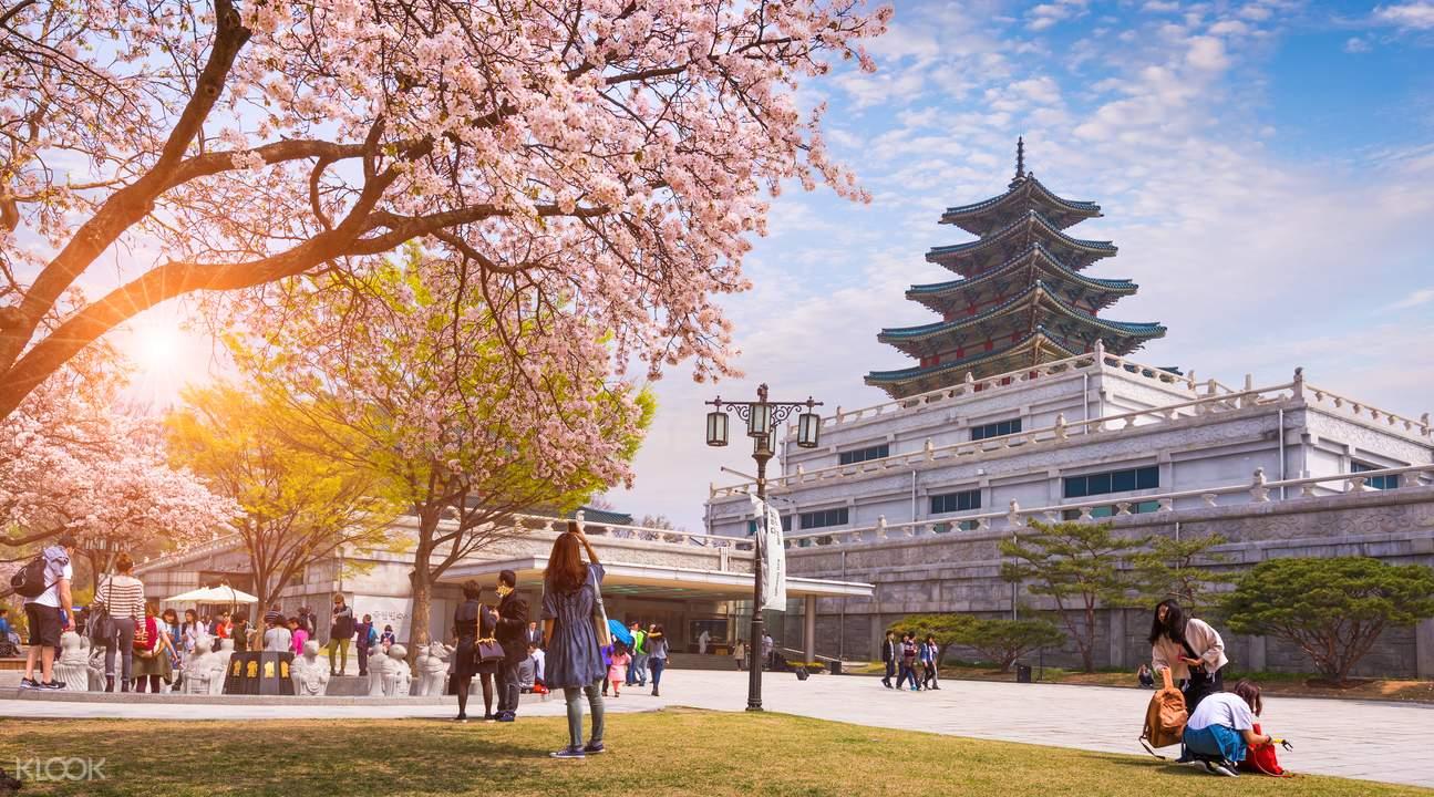仁川国际机场接送机