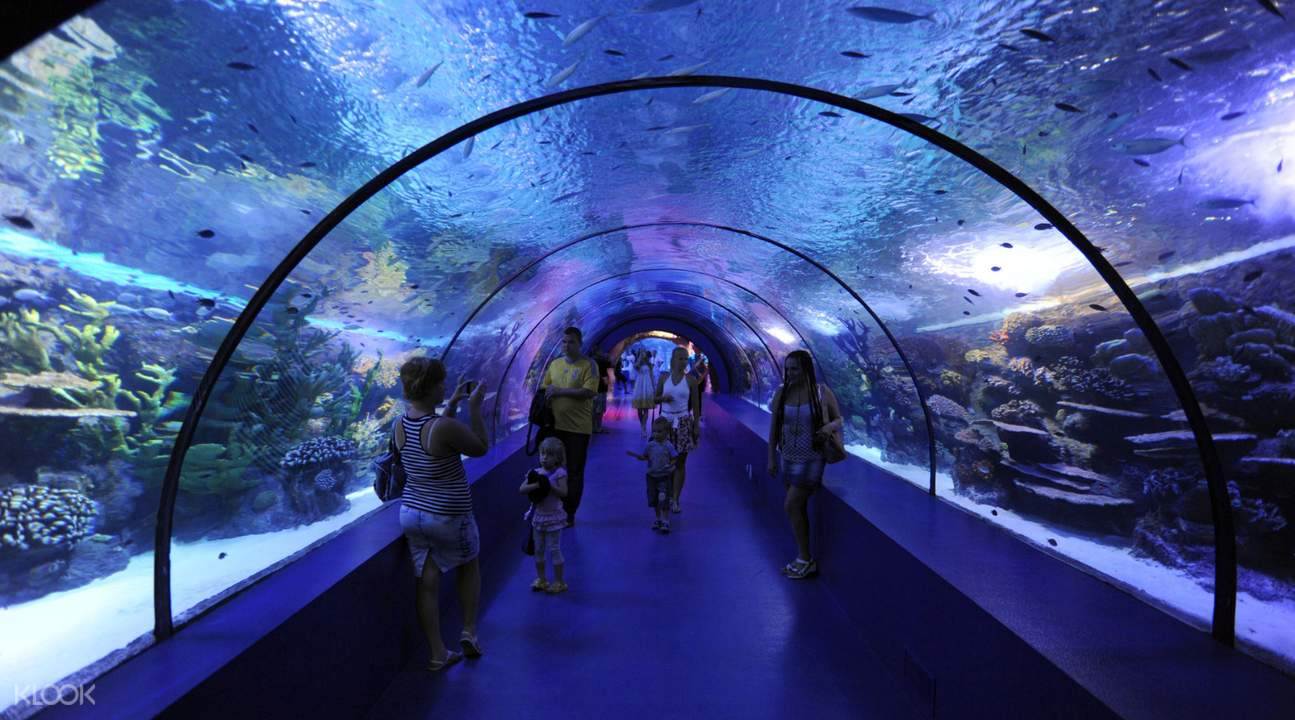 antalya thematic aquarium