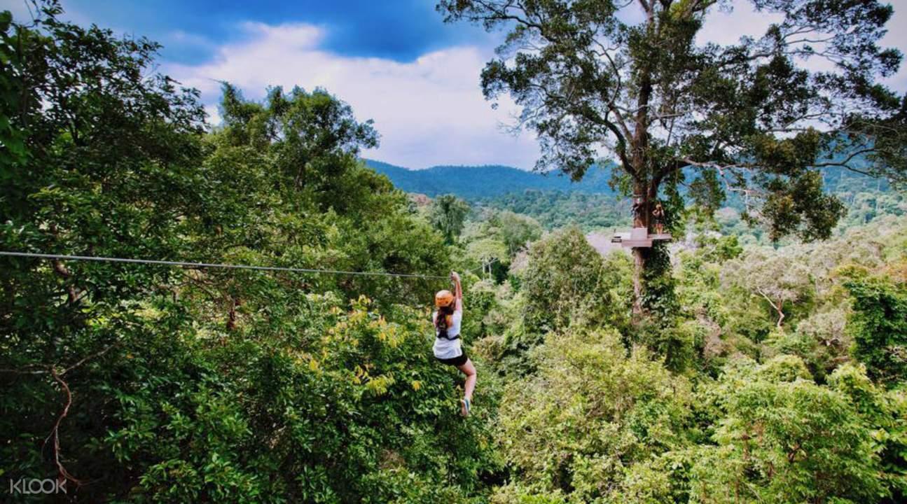 暹粒丛林飞跃