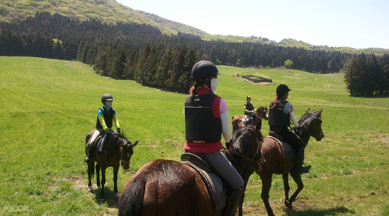 濟州樂園騎馬場