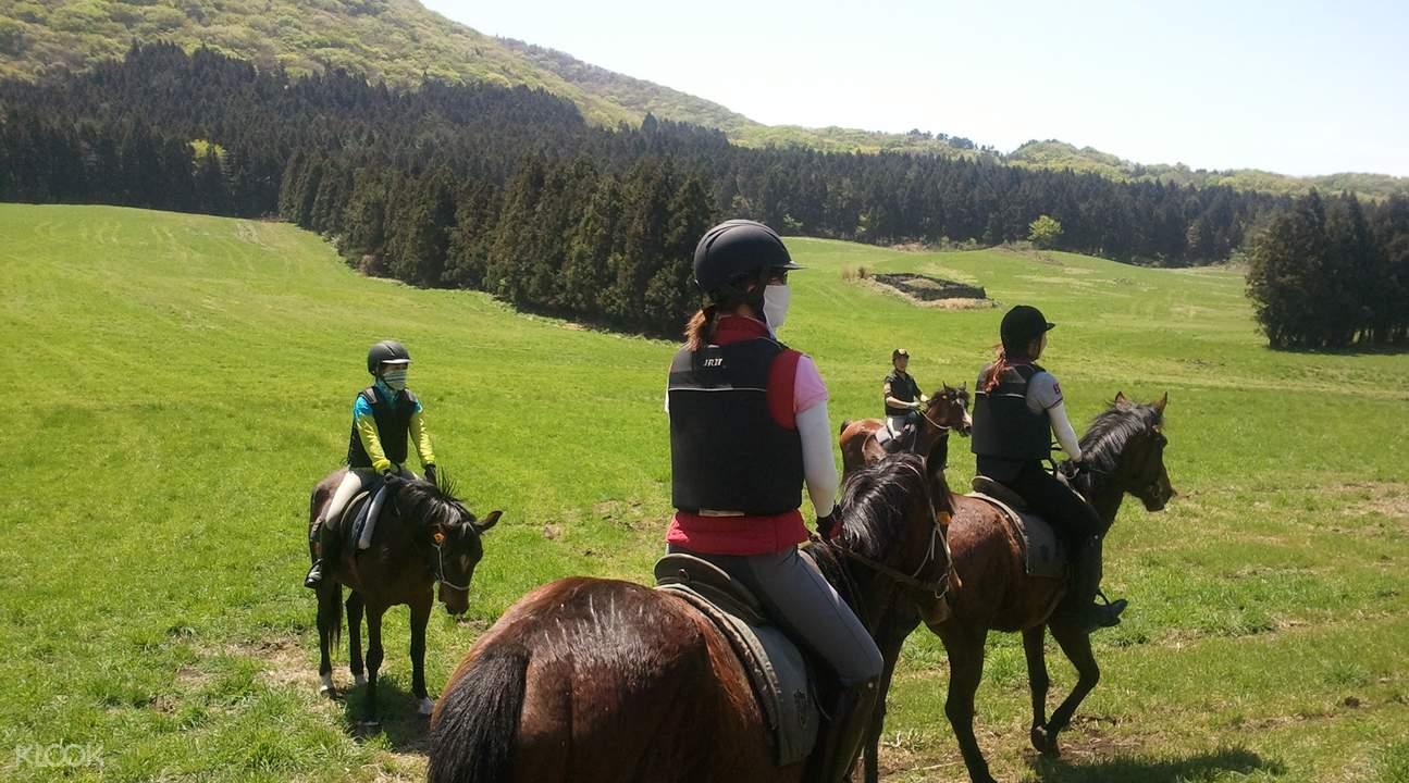 jeju island horse riding hallasan