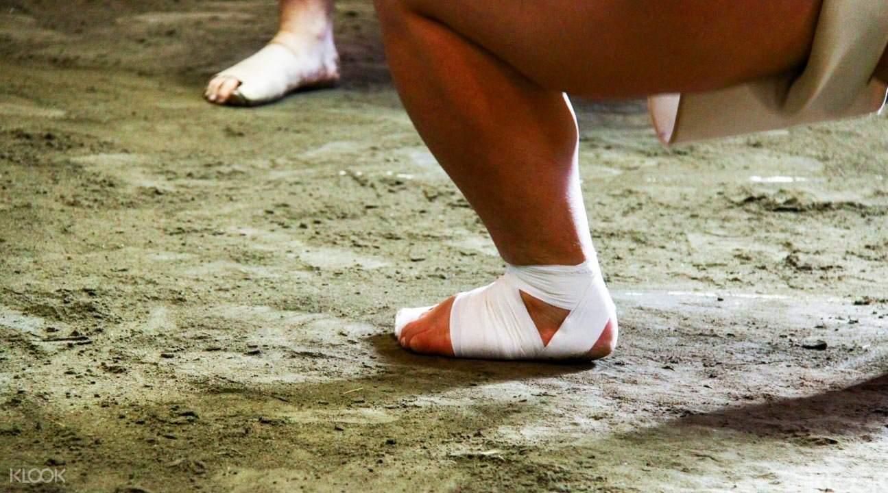 相撲訓練参觀