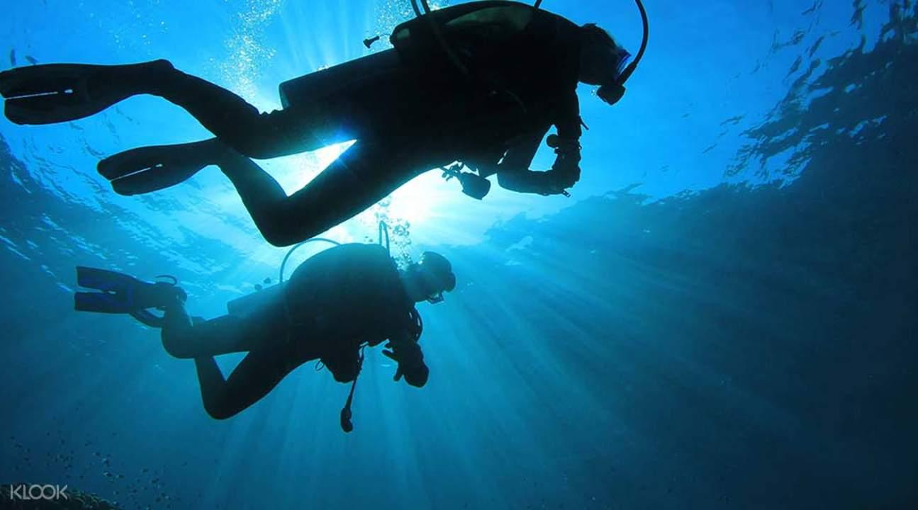 藍夢島珊瑚海上艇遊